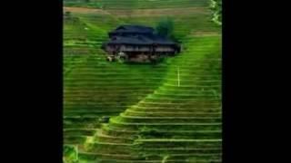 Chakma new song..2016