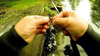 REAL sight fishing for perch underwater wt worms. Подводная рыбалка на окуня на червя
