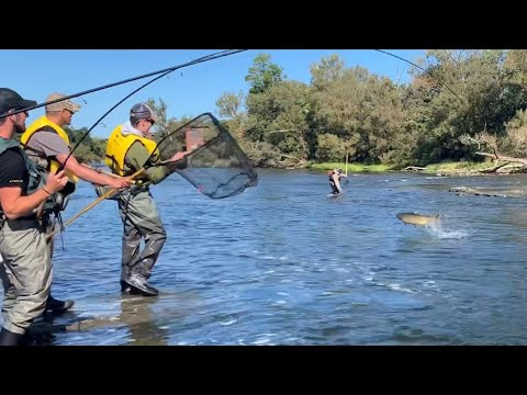 Oswego River SALMON FISHING!!!!