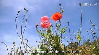 【靜思妙蓮華】20190115 - 如來實見 三界之相 - 第1523集