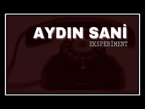 Aydın Sani -Eksperiment / 2018