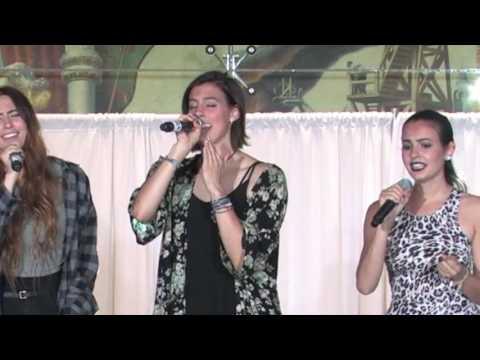 """CIMORELLI """"Skyscraper"""" by Demi Lovato live at the Summit Fundraiser in Milwaukee"""