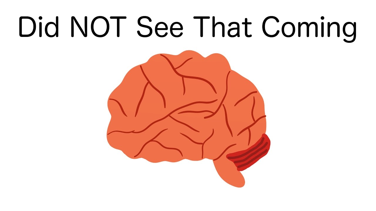 The Surprising Thing Your Brain Can't Resist
