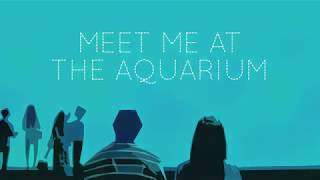 Meet Me At The Aquarium