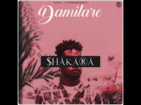 DAMILARE - SHAKARA (OFFICIAL AUDIO)