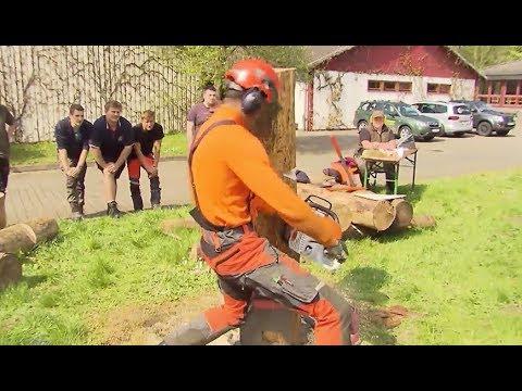 Bester Forstwirt-Lehrling Schleswig-Holsteins beim Landeswettbewerb gesucht
