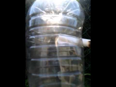 fumo nella bottiglia