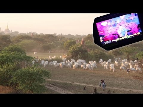 ZONSOPKOMST BIJ DE TEMPELS VAN BAGAN EN KARAOKE IN DE NACHTBUS | WERELDREIS VLOG 39 🌍