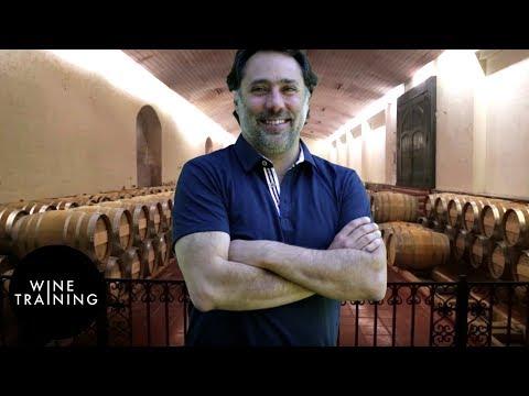 Chilean Wine - Maipo Valley | Wine Training School