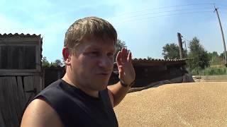 Будни деревенщины // Заготовка кормов // Купили зерно