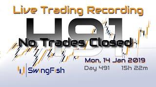 [Mon 14 Jan 2019 | No Trades]