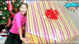 Opening a Giant Christmas Present What I got for Christmas B2cutecupcakes thumbnail