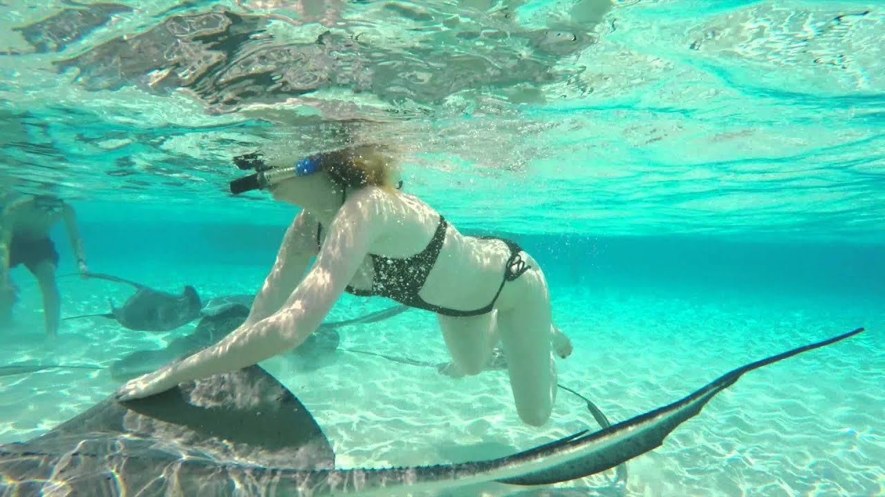 Carnival Cruise Line Excursions In Jamaica Amp Grand