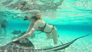 Carnival Cruise Line - Excursions in Jamaica & Grand Cayman