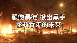 莫让孩子沦为政治燃料 | CCTV