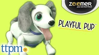 Zoomer Playful Pup from Spin Master