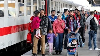 Europe's refugee crisis is 'unbelievable humanitarian problem' – Trump