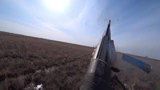 Охота на уток Степные озера Казахстана