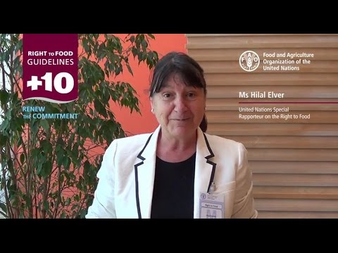 10 Years of the Right to Food Guidelines - Interview with Hilal Elver