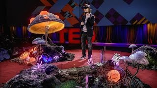 The dawn of the age of holograms | Alex Kipman