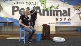 G C C C Pet & Animal Expo 2013