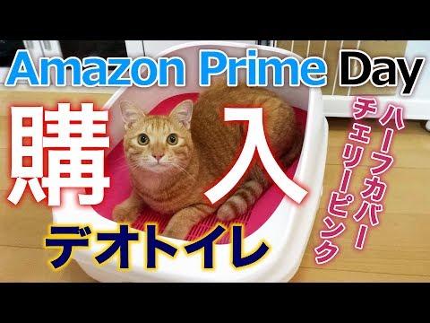 デオトイレ ハーフカバー チェリーピンク を Amazonプライムデーで購入DIY 手作りシステムトイレと交換します茶トラ猫の茶々とマロンは使ってくれるかな