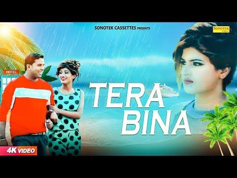 Tere Bina | Nitin Kashyap | Himanshi Goswami | GR | Latest Haryanvi Songs Haryanavi 2018 | Sonotek