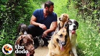 hike-with-the-world-s-best-dog-dad-and-his-9-rescue-dogs-the-dodo-airbnb-experiences