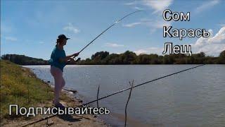 рыбалка рыбалка2020 фидр Нашествие сомов