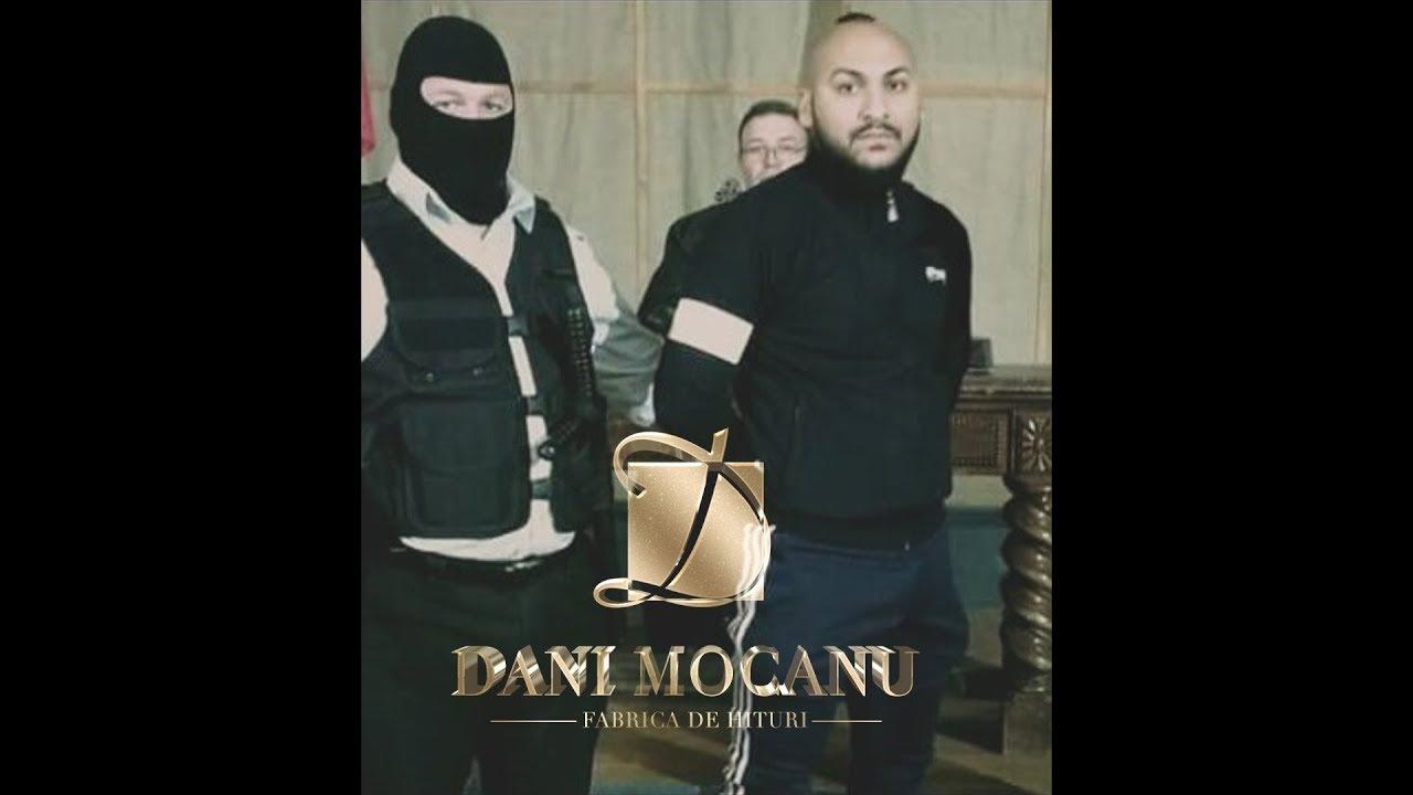 Dani Mocanu - Familie Frumoasa  | Official Audio