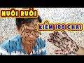 Nuôi Đàn Ruồi Kỳ Lạ, Bán 1kg Trứng Thu 30 Triệu Ở Vùng Ven Sài Gòn