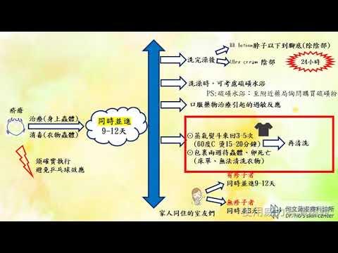 疥瘡的衛教(治療與消毒) 何文藻皮膚科診所