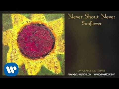 "Never Shout Never - ""New Sound"""