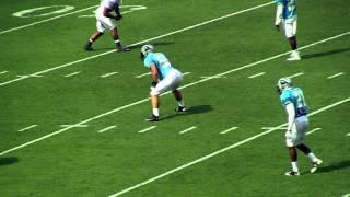 Carolina Panthers 2013 Fan Fest Highlights - Bank Of America Stadium - Charlotte North Carolina