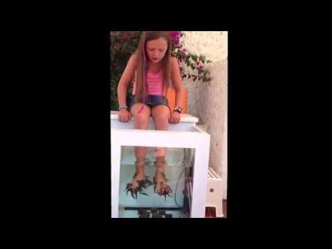 Elisha getting her feet cleaned by the fish on holiday