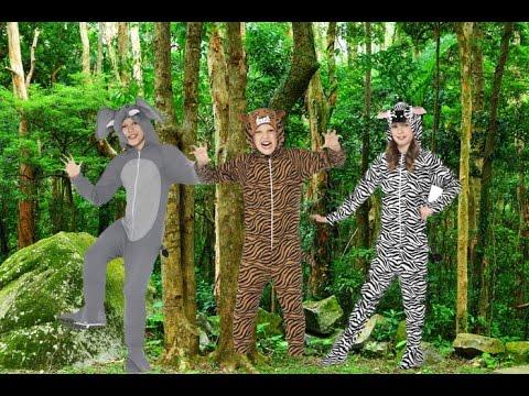 Animal Fancy Dress Onesies Video - YouTube