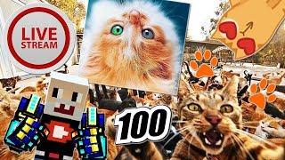 ПроВектор Стрим - Нас 100000!!! (Часть 1)