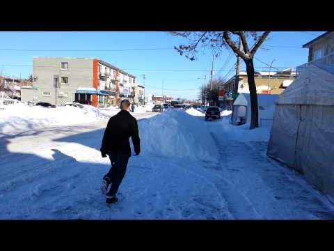 Montreal snow diving