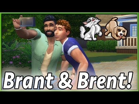 The Sims Info/Thoughts: Kittens & Puppies in CAP, More Laundry Day Tidbits!