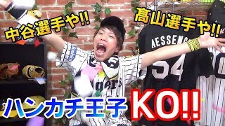 2018年6月12日阪神タイガースVS北海道日本ハムファイターズ交流戦【ハイ...