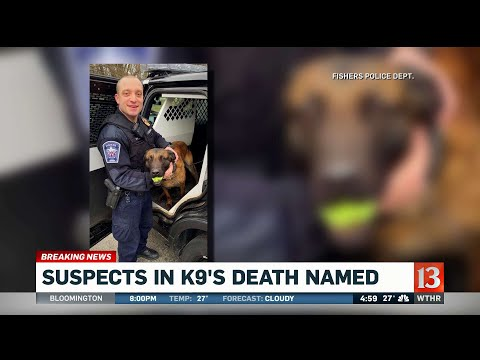 Andi and Kenny  - Police K-9 Killed During Manhunt