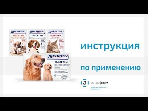 Празител таблетки для кошек и собак.  Инструкция по применению