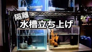 水槽立ち上げ 水槽台はメタルラックで対応・・【海水風隔離】