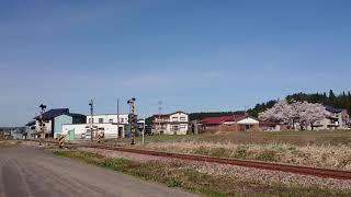 飯山線観光列車 おいこっと キハ110