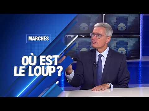 Bourse : où est le loup ? (L'interview de Didier Saint-Georges - Carmignac)