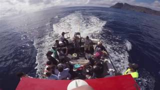 St Helena Island short promotional video