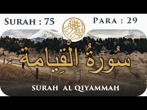Download Powerful Eye Opening Recitation Of The Quran Surah