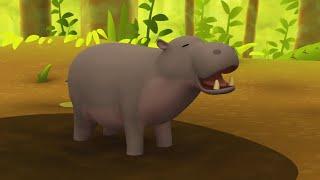 Leo the Wildlife Ranger Minisode #110 - Pygmy Hippo   Animal Cartoons for Kids