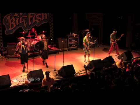 REEL BIG FISH - S.R. - live @ The Ogden Theatre