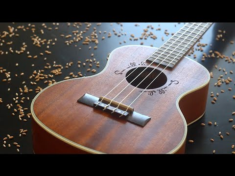 Chosen Generation Ukulele chords by Chris Tomlin - Worship Chords